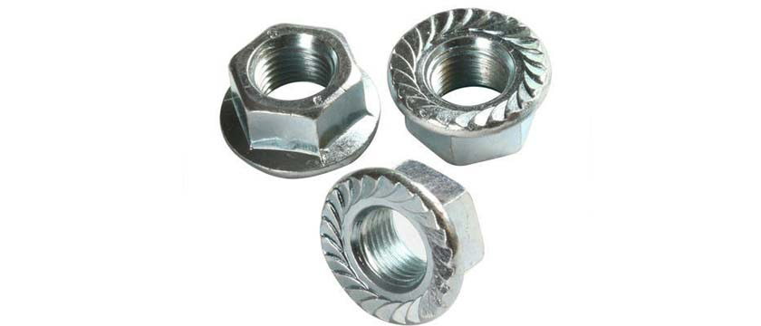 Flange Nuts manufacturers, suppliers, dealers in India
