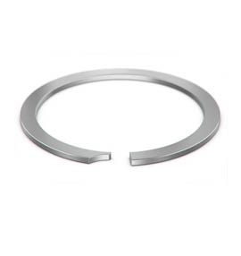 Internal Rings manufacturer, suppliers, exporters in India